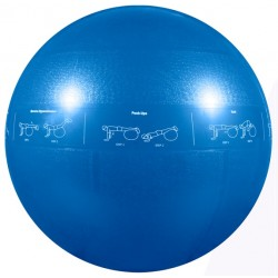 GoFit 55cm Pro Stability Ball
